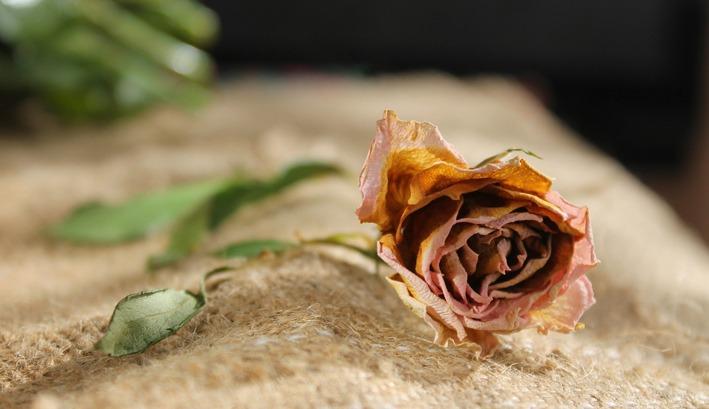 débarras-après-décès-rhone-lyom